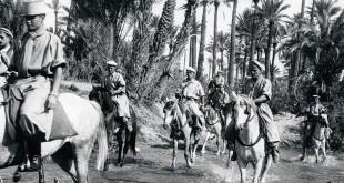 DIA-algerie_carrousel