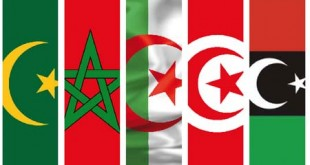 DIA-maghreb-drapeau