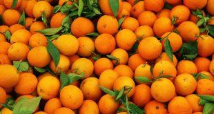 dia-orange