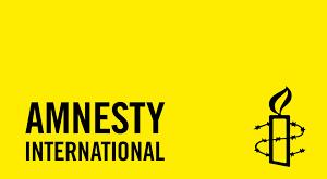 dia-amnesty