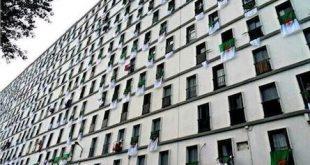 dia-drapeau-algerien