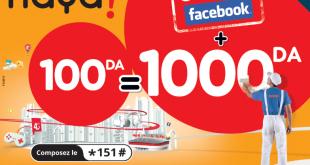 DIA- Haya ! 100