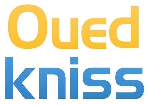 DIA-ouedkniss